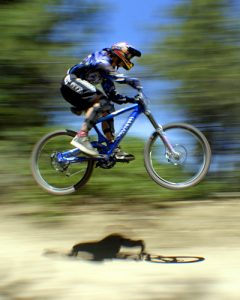 Demo Bike Sales